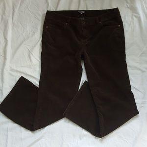 Polo Jeans Ralph Lauren Dark Brown Corduroy Pants